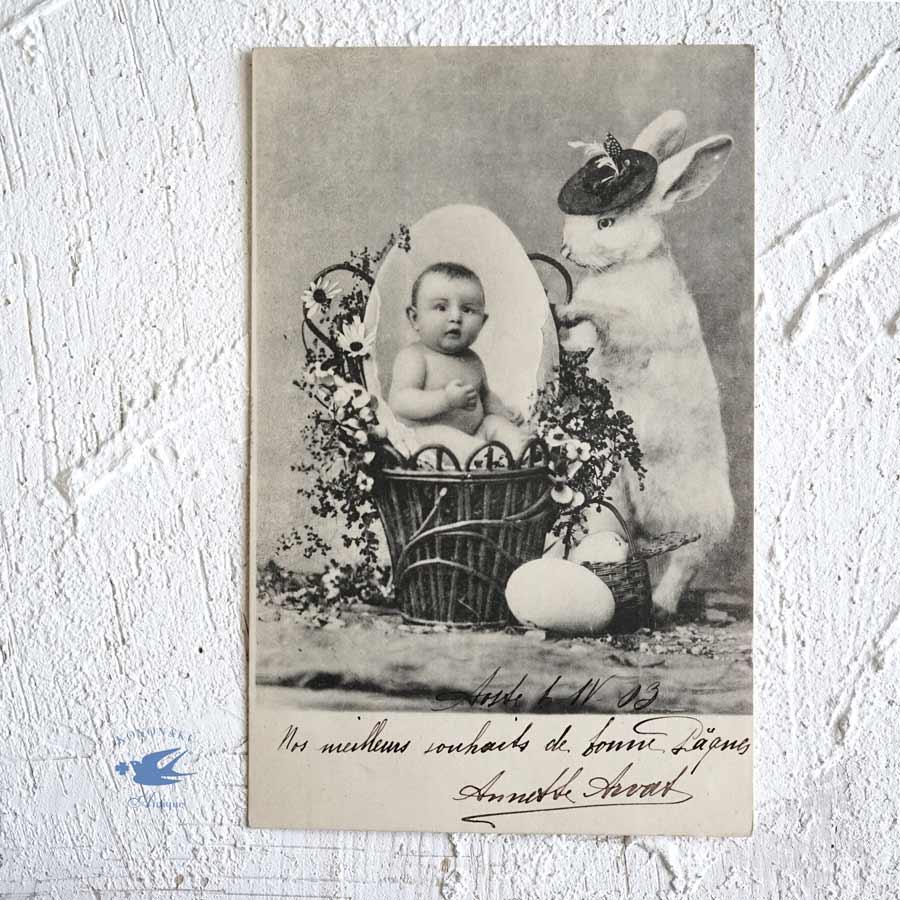 アンティークポストカード イースターベビーとうさぎ gh-193